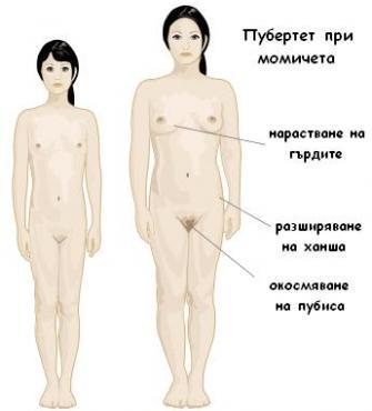 Пубертет при момичета - изображение