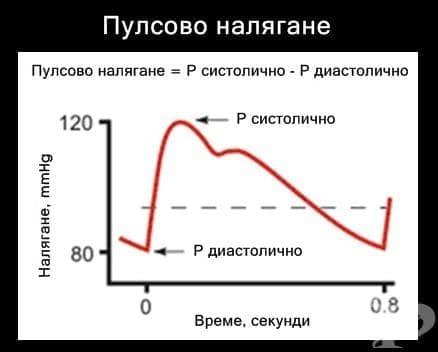Пулсово налягане - изображение