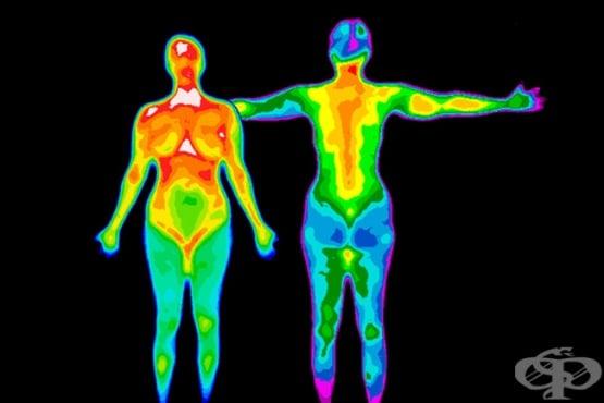 Телесна температура - изображение