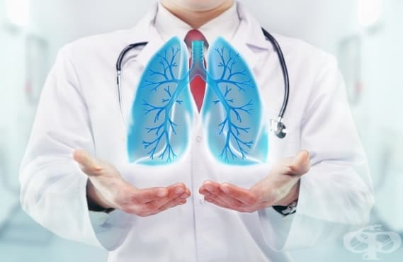 Промени в отношението вентилация/перфузия при патологични условия - изображение