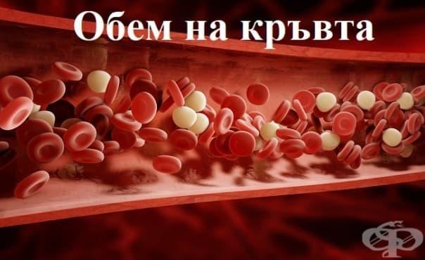 Обем на кръвта - изображение