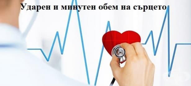 Ударен и минутен обем на сърцето - изображение