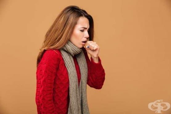 5+1 ефикасни сиропа за кашлица от серията Бронховитал - изображение