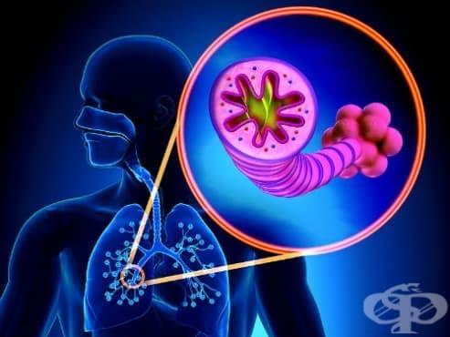 Хронична обструктивна белодробна болест (ХОББ)