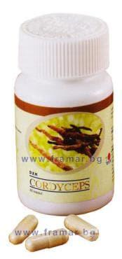 Изображение към продукта КОРДИЦЕПС капсули 450 мг.* 60 DXN