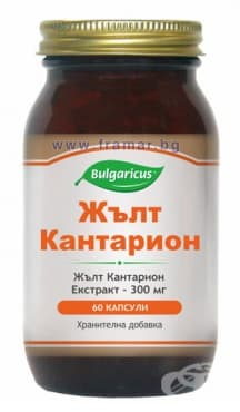 БУЛГАРИКУС ЖЪЛТ КАНТАРИОН капсули 300 мг. * 60 - изображение