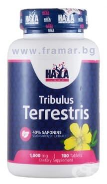 Изображение към продукта ХАЯ ЛАБС ТРИБУЛУС ТЕРЕСТРИС табл. 1000 мг. * 100