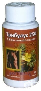 ТРИБУЛУС капс. 250 мг. * 60 ПЛАНТЕКСТРАКТ - изображение