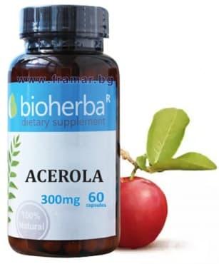 БИОХЕРБА АЦЕРОЛА капсули 300 мг. * 60 - изображение