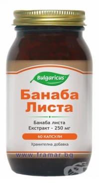 БУЛГАРИКУС БАНАБА ЛИСТА капсули 250 мг  * 60 - изображение