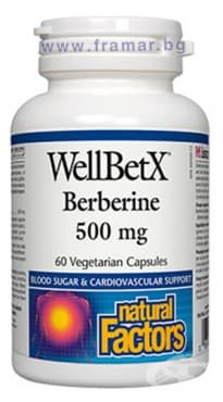 БЕРБЕРИН капсули 500 мг. * 60 НАТУРАЛ ФАКТОРС - изображение