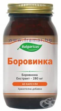 БУЛГАРИКУС БОРОВИНКА капсули 200 мг * 60 - изображение