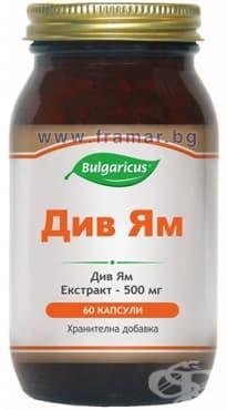 БУЛГАРИКУС ДИВ ЯМ капсули 500 мг.  * 60 - изображение