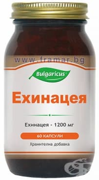 БУЛГАРИКУС ЕХИНАЦЕЯ капсули 1200 мг. * 60 - изображение