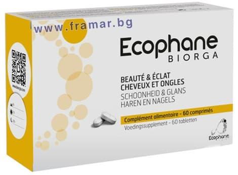 БИОРГА ЕКОФАН таблетки * 60 - изображение