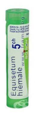 Изображение към продукта ЕКВИЗЕТУМ ХИЕМАЛЕ 5 СН