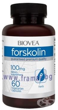 БИОВЕА ФОРСКОЛИН капсули 100 мг. * 60 - изображение