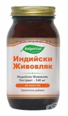 БУЛГАРИКУС ИНДИЙСКИ ЖИВОВЛЯК / ХУСК  капсули 340 мг. * 60 - изображение