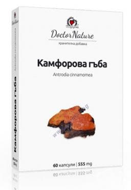 Изображение към продукта КАМФОРОВА ГЪБА капсули * 60 DOCTOR NATURE