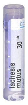 Изображение към продукта ЛАХЕСИС МУТУС 30 СН