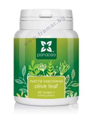 Изображение към продукта ПАНАЦЕЯ МАСЛИНОВИ ЛИСТА капули 400 мг * 60