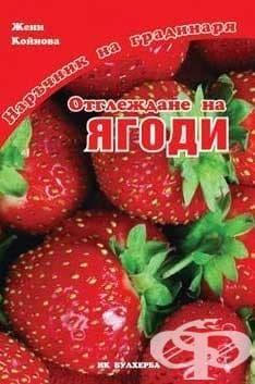 Изображение към продукта ОТГЛЕЖДАНЕ НА ЯГОДИ - ЖЕНИ КОЙНОВА