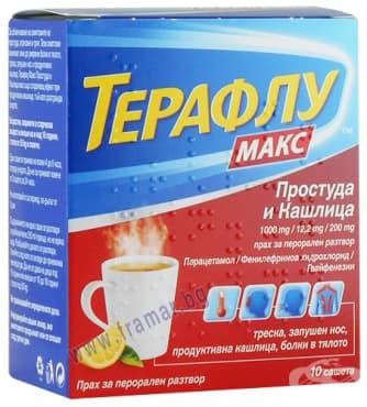 ТЕРАФЛУ МАКС саше * 10 - изображение