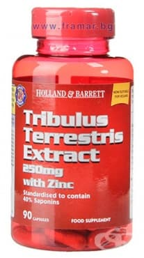 ТРИБУЛУС ТЕРЕСТРИС ЕКСТРАКТ капсули 250 мг. * 90 HOLLAND BARRETT - изображение