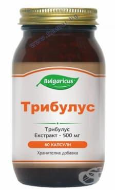 БУЛГАРИКУС ТРИБУЛУС капсули 500 мг. * 60 - изображение