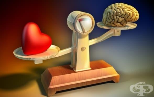 Кой е факторът, който позволява когнитивен контрол върху емоциите - изображение