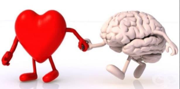 10 психологически проучвания, които всеки влюбен трябва да знае – част 2 - изображение