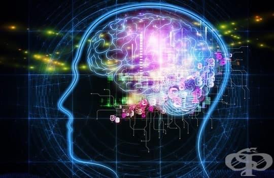 10 интересни факта за човешката памет, които трябва да знаете – част 1 - изображение
