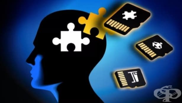 Какво представлява паметта и как работи тя - изображение