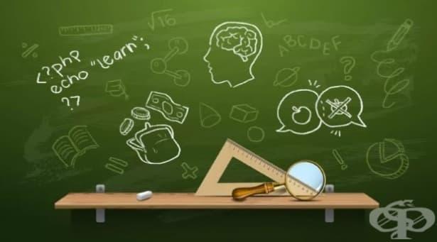 Уроци, които няма да научим в училище — част 3 - изображение