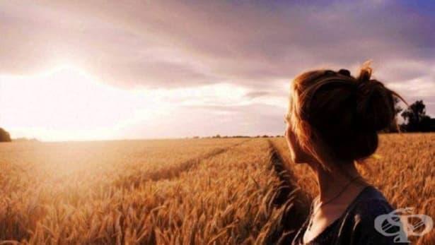 Парадоксът на щастието: какво е и как работи? - изображение