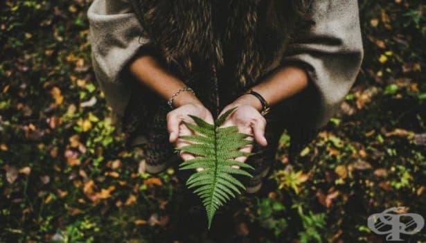 Търпението е трансцедентална добродетел: Как да я култивираме - изображение
