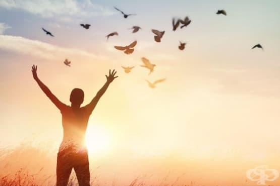 Прошката е за теб, а не за тях: Прости, за да излекуваш себе си - изображение