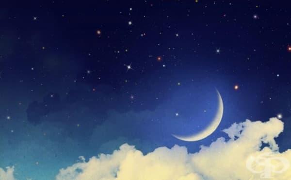 Интерпретация на сънищата: Какво означават те - изображение