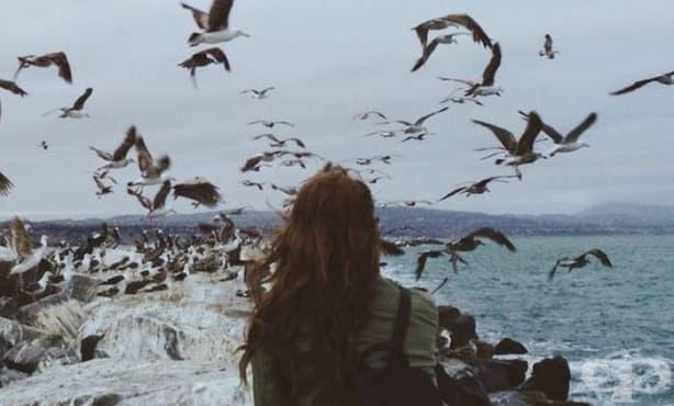 Дневна доза мъдрост: Сключете мир с живота си, какъвто е и да е той - изображение