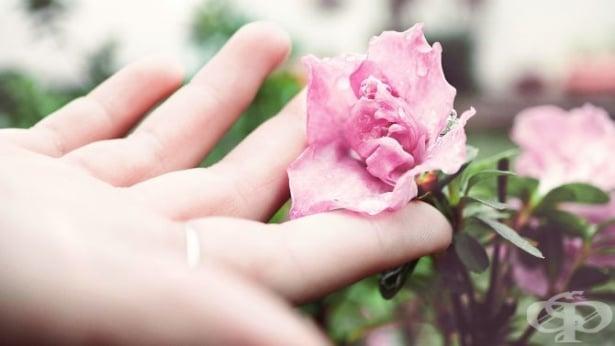 Обичате ли себе си? 3 ключови стратегии ще подобрят връзката ви със самите вас  - изображение