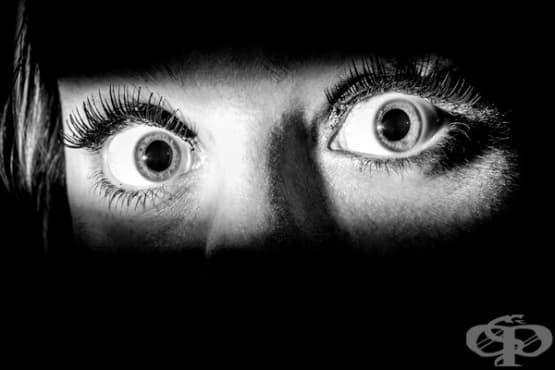 7 неща, които трябва да знаем за страха - изображение