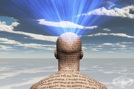 14 психологически факта, които всеки трябва да знае - част 1 - изображение