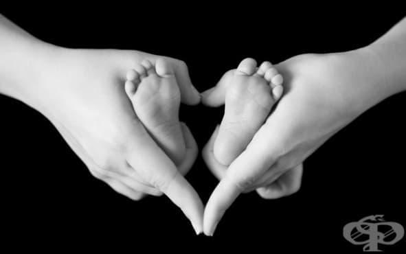 Бебешката памет работи от много ранна възраст - изображение
