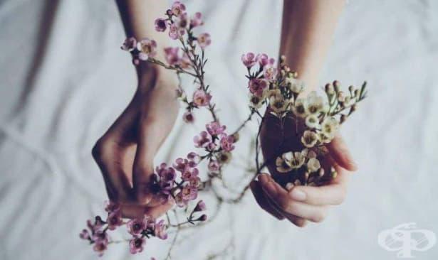 Благодарността е паметта на сърцето - изображение