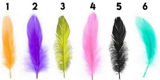 Изберете перо и разберете каква е вашата персоналност - изображение