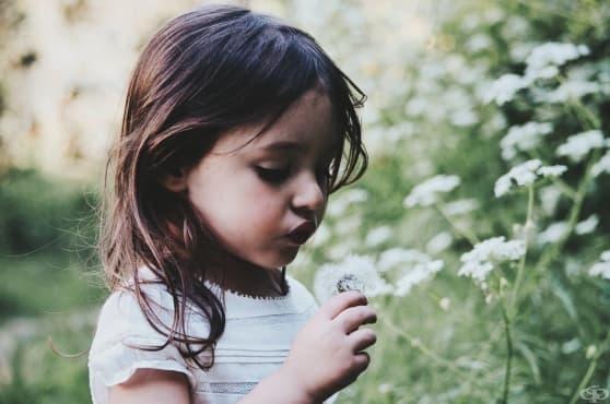 Нормалното развитие на детето през четвъртата година - изображение