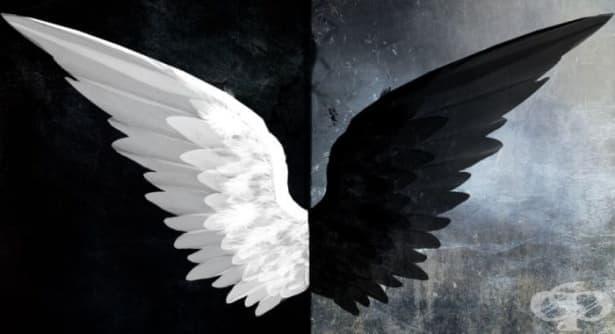 Притча за невъзможния съюз между злото и доброто - изображение