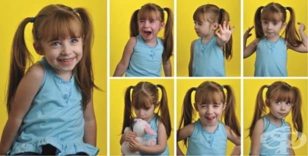 Трябва ли емоциите да бъдат преподавани в училищата - изображение