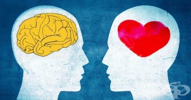 Каква е емоционалната ми интелигентност? - изображение