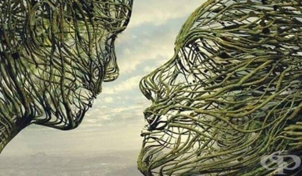 Емпатичният мозък: силата на връзката между хората - изображение